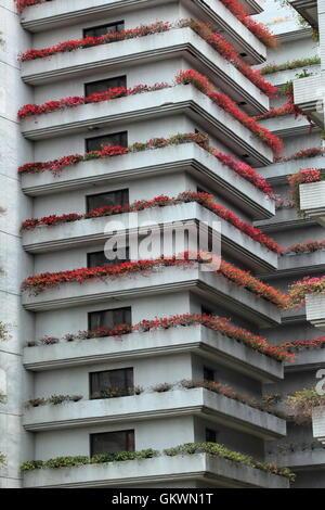 Thailand, Bangkok,  residential buildings - Stock Image