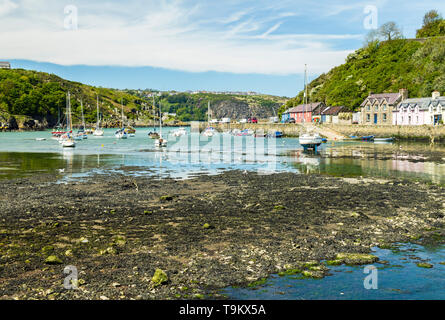 Coastal village of Abergwaun, also known as Lower Fishguard. Famous for being a location for Under Milk Wood Abergwaun is on the Pembrokeshire Coast. - Stock Image