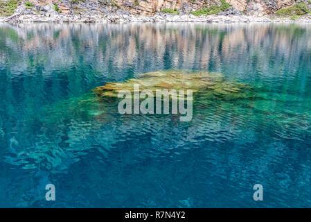 Beautiful lake in Jasper National Park - Stock Image