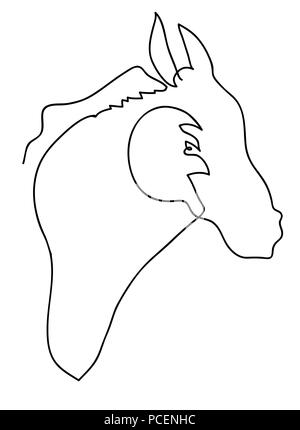 Horse head  Black and white simple line drawing of horse illustration. - Stock Image