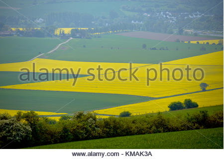Mist over the village due to the river floating through it. The yellow fields are rapeseed or Brassiaca Napus in - Stock Image