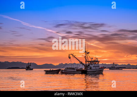 Seiners anchored in Amalga Harbor at sunset awaiting a commercial salmon opening; Juneau, Alaska, United States of America - Stock Image