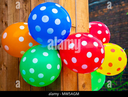 Multi-coloured balloons with spots hanging on a wooden wall Liverpool May 2018 - Stock Image