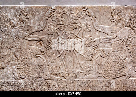 Stone-Reliefs-Inscribed, The Metropolitan Museum of Art, Manhattan, New York USA - Stock Image