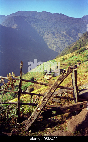 Broken fence and terraced fields on steep side of Modi Khola Valley Annapurna Circuit Nepal Himalayas - Stock Image