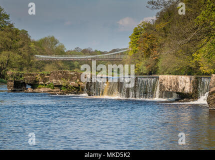 The Grade II listed and Scheduled Ancient Monument of Whorlton Suspension Bridge over the river Tees, connecting Yorkshire and County Durham, UK - Stock Image