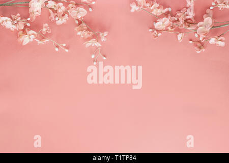 Beautiful and peaceful spring flower blossoms against a coral colored background. Image shot from top view. - Stock Image