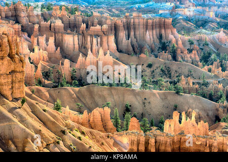 Trail through Bryce Canyon with giant sandstone Hoodoos - Stock Image