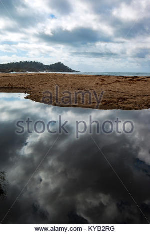Point Lobos State Park is seen from Monastery Beach, just south of Carmel, California, with sky reflecting in the - Stock Image