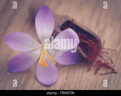 Saffron with crocus flower on wooden background - Stock Image