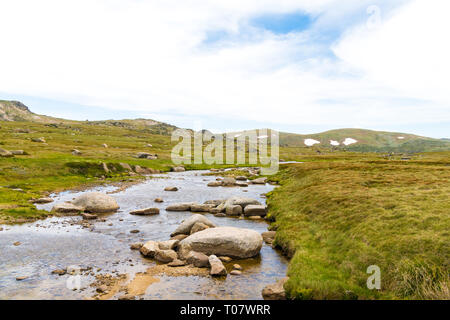 View over Snowy River in Kosciuszko National Park, NSW, Australia. Nature background with plants and vegetation. - Stock Image
