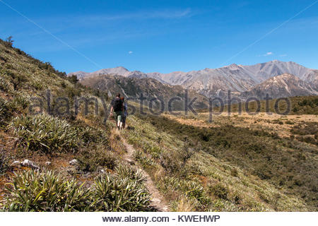Tourists on walking trail, Canterbury, New Zealand - Stock Image
