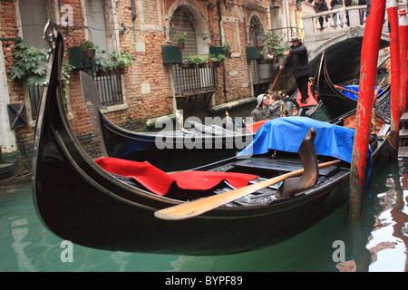Gondola ride in Venice, Italy - Stock Image