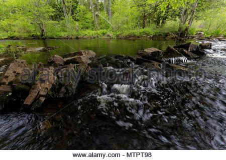 Medomak River in the Sopring, Waldoboro, Maine, USA - Stock Image