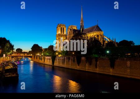Night over Notre Dame de paris in France - Stock Image