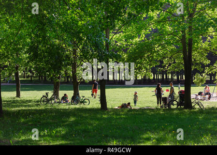 Family park summer, view of family groups relaxing on a summer afternoon in the Citadel Park in Poznan, Poland, Europe. - Stock Image