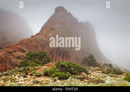 Foggy morning in the Arches National park, Utah, USA - Stock Image