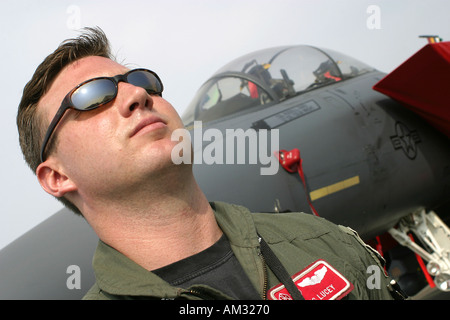 Pilot and cockpit of USAF Boeing F 15 - Stock Image