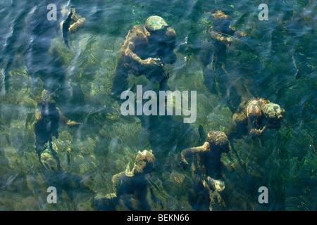 Underwater statue of The Merman and his seven sons (Agnete Og Havmenden) Gammell Strand Canal, Copenhagen, Denmark - Stock Image