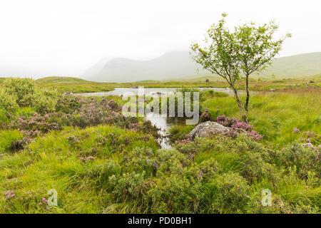 Rannoch Moor, Loch Ba, Scotland - Stock Image