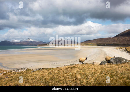 Winter view over Seilebost (Shelibost) beach in the Isle of Harris - Stock Image