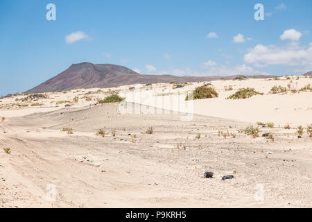 Dunes in Corralejo Natural Park on Fuerteventura, Canary Islands - Spain - Stock Image