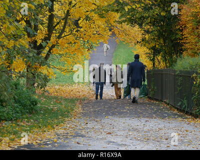 Walkers in Hyde Park. London enjoying the November afternoon sunshine - Stock Image
