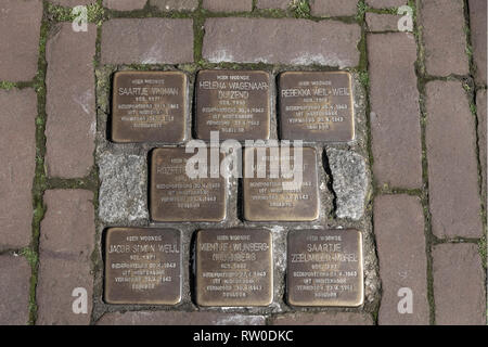 Netherlands, Gouda, 2017, Stumbling stones, or stolpersteine are memorial brass plates placed into the pavement outside certain houses or deportation  - Stock Image