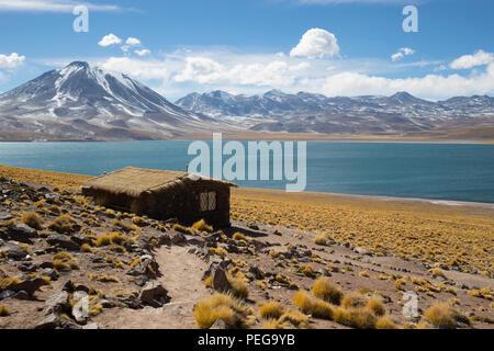 Laguna Miscanti, Chili - Stock Image