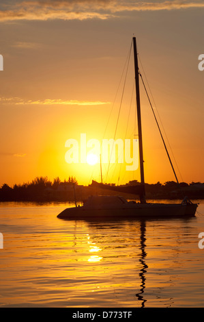Sunrise Sailboat - Stock Image