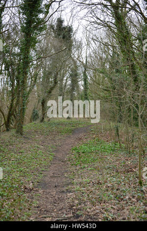 Former railway line now a path near the north Oxfordshire village of Hook Norton - Stock Image