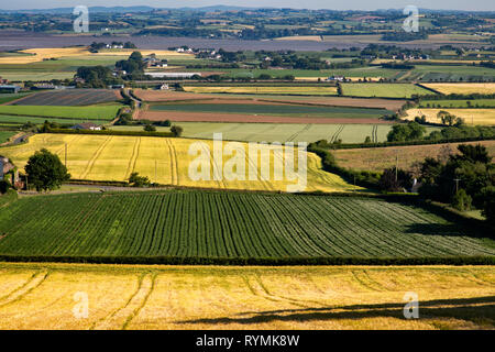 Potato and Barley fields near Scrabo in County Down, Northern Ireland - Stock Image