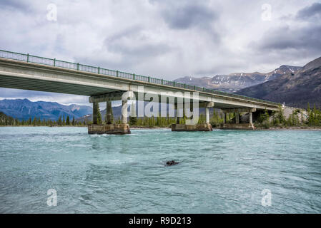 Saskatchewan Crossing River in Banff National Park. - Stock Image
