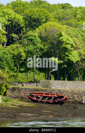 Beached wooden rowing boat  near woodland on a river estuary - Stock Image