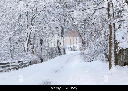 Winter road in the Swedish countryside - Stock Image
