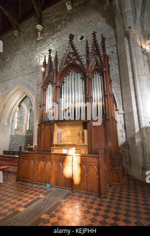 The organ in the 13th century St. Canice's Cathedral ( Church of Ireland) in Kilkenny Ireland - Stock Image