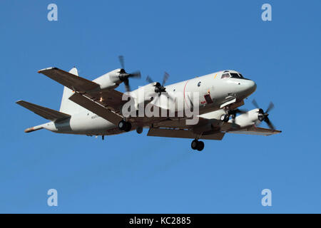Military aviation. German Navy P-3C Orion maritime patrol aeroplane in flight - Stock Image