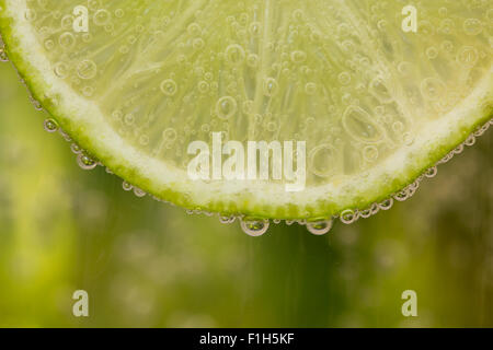 Green lime with water splash - Stock Image