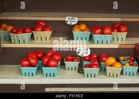 Tomatoes for sale at a farm stand in Amish Country, Lancaster County, Pennsylvania, USA - Stock Image