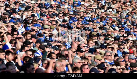 Fans shield their eyes in the sun during the Premier League match between Brighton & Hove Albion and Southampton at The American Express Community Stadium . 30 March 2019 Editorial use only. No merchandising. For Football images FA and Premier League restrictions apply inc. no internet/mobile usage without FAPL license - for details contact Football Dataco - Stock Image