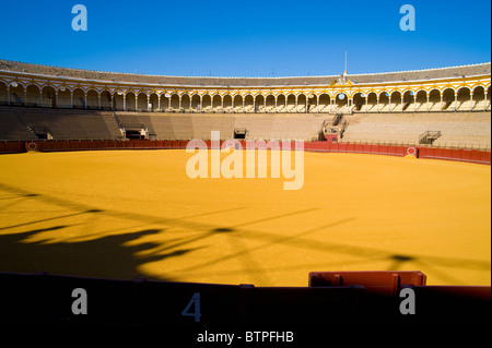 Plaza de Toros, Bull fighting ring, Seville, Andalucia, Spain - Stock Image