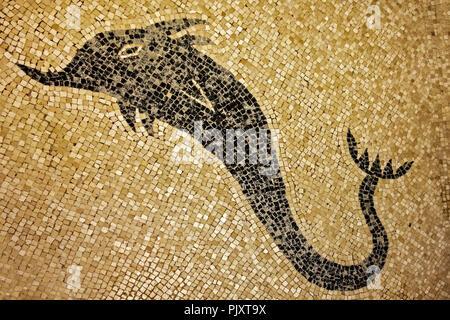Shark Mosaic Herculaneum Campania Italy - Stock Image