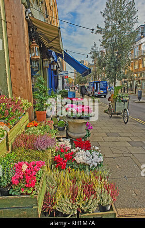A street scene in Marylebone, London with boxes of flowers outside a florist. - Stock Image