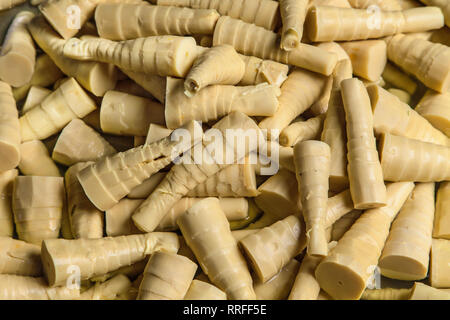 Bamboo shoots in a thai market. - Stock Image