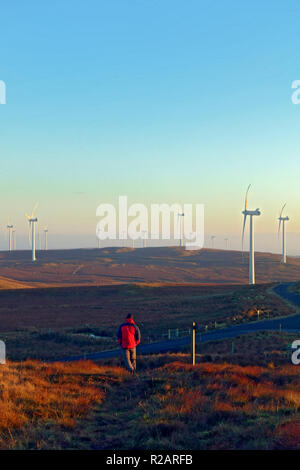 Scotland, UK. 18th Nov 2018. Man walking through Kelburn Wind Farm near Largs, just before sunset, following a cloudless wintry day Credit: PictureScotland/Alamy Live News - Stock Image