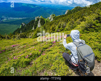 Back view of woman blogger taking photo on smartphone on hiking tour discover wild lands on vacation - Stock Image