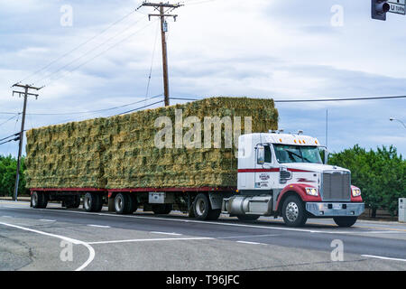 A HayTruck stopped at a traffic light in the Central Valley Stanislaus county of California - Stock Image