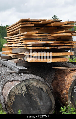 A pile of rough cut lumber drying on top of large pine logs at a saw mill in the Adirondack Mountains, NY USA - Stock Image