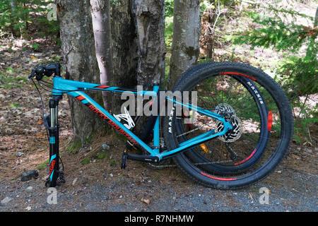 Mountain bike locked to a tree. - Stock Image