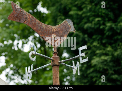 rusty weather vane bird with compass points - Stock Image